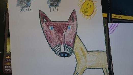 Hollie's fox